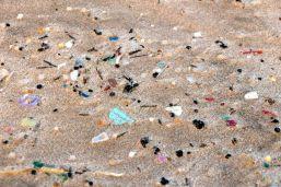 Pedacinhos de plástico que matam.